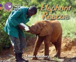 Elephant Rescue (6-7 años)