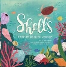 Shells : A Pop-up Book of Wonder