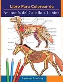 Libro para colorear de Anatomia del Caballo + Canina: